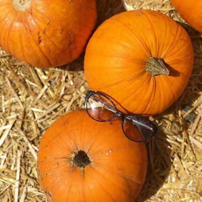 Photo of Lafont Paris eyeglasses and pumpkins.